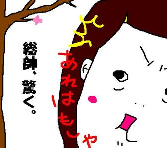 159_sakurakaika