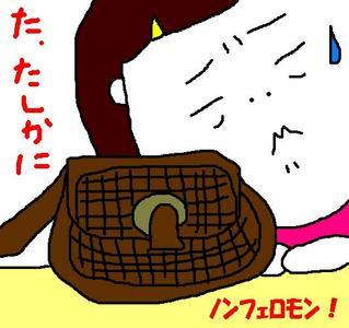227_nonferomonbag